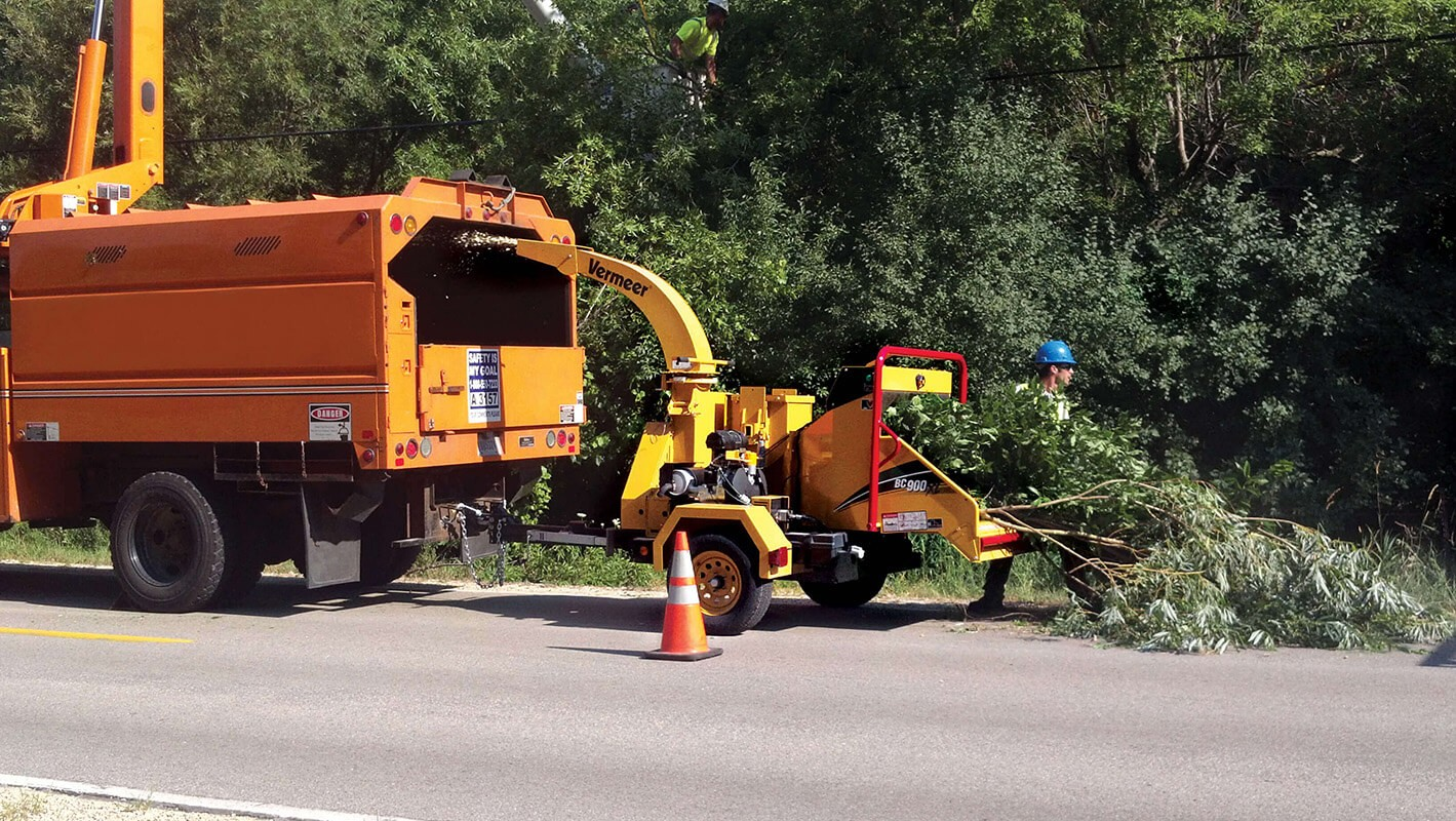 Commercial Tree Services-Citrus Park FL Tree Trimming and Stump Grinding Services-We Offer Tree Trimming Services, Tree Removal, Tree Pruning, Tree Cutting, Residential and Commercial Tree Trimming Services, Storm Damage, Emergency Tree Removal, Land Clearing, Tree Companies, Tree Care Service, Stump Grinding, and we're the Best Tree Trimming Company Near You Guaranteed!